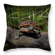 Painted Turtle Sunning Itself On A Log Throw Pillow