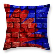Painted Wall Throw Pillow