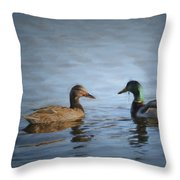 Painterly 2 Eye For You Throw Pillow