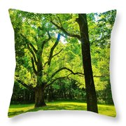 Painting-like Photo Of A Rural Lawn Throw Pillow