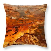 Painting Of Nature Throw Pillow