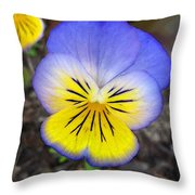 Painting Of Pansey Flower Throw Pillow