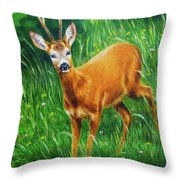 painting of young deer in wild landscape with high grass. Eye contact. Throw Pillow