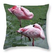 Pair In Pink Throw Pillow