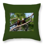 Pair Of American Bald Eagle Throw Pillow