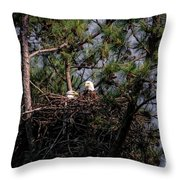 Pair Of Bald Eagles In Nest Throw Pillow