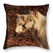 Pair Of Beauties Throw Pillow