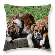 Pair Of Boxers Throw Pillow