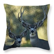 Pair Of Bucks Throw Pillow