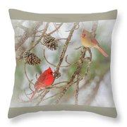 Pair Of Cardinals Throw Pillow