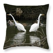 Pair Of Egrets Throw Pillow by George Randy Bass