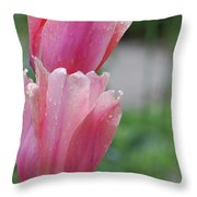 Pair Of Flowering Pink Tulips With Dew Drops Throw Pillow