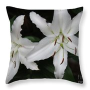 Pair Of Flowering White Stargazer Lilies In Bloom Throw Pillow