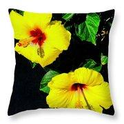Pair Of Golden Hibiscus In Morning Sun Throw Pillow