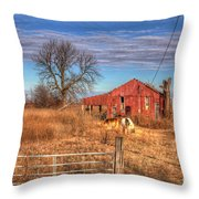 Pair Of Horses Grazing In A Field Throw Pillow