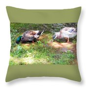 Pair Of Mallard Duck 8 Throw Pillow