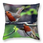 Pair Of Robins Throw Pillow