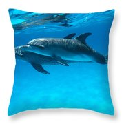 Pair Of Spotted Dolphins Throw Pillow