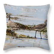 Pair Of Willets Throw Pillow