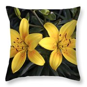 Pair Of Yellow Lilies Throw Pillow