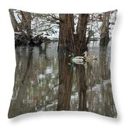 Paired Up - Awaiting Spring Throw Pillow