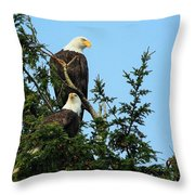 Paired Up Throw Pillow