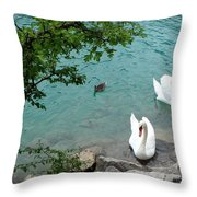 Pairs Of A Feather Throw Pillow