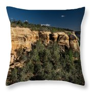 Palace Picturesque Throw Pillow