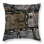 Palace Walls Throw Pillow