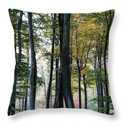Palatine Forest Throw Pillow