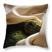 Pale Orange Silk And Moss Throw Pillow