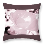 Pale Pink And White Rose Throw Pillow