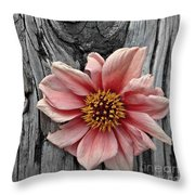 Pale Pink Flower On Wood Throw Pillow by Patricia Strand