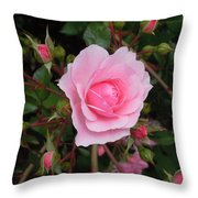 Pale Pink Rose Oregon Coast Throw Pillow