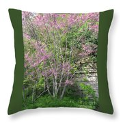 Pale Pink Spring Throw Pillow