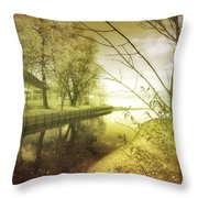 Pale Reflections Of Life Throw Pillow