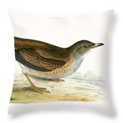 Pale Thrush Throw Pillow
