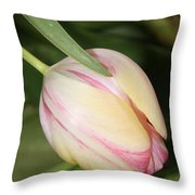Pale Yellow And Pink Tulip Throw Pillow