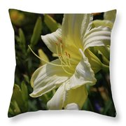 Pale Yellow Lily In A Garden Of Daylilies Throw Pillow