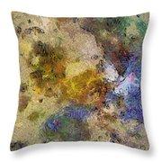 Paleology Weave  Id 16097-223127-16640 Throw Pillow