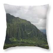 Pali  Throw Pillow