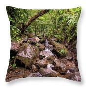 Palikes Stream Along Trail Throw Pillow