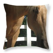 Palimino Pal Throw Pillow