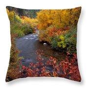 Palisades Creek Canyon Autumn Throw Pillow