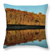 Palisades-kepler State Park Throw Pillow