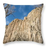 Palisades Sill Cimarron Throw Pillow