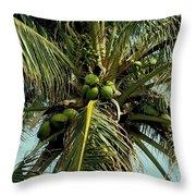 Palm 1 Throw Pillow