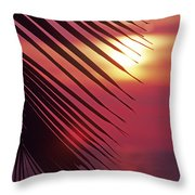 Palm At Sunset Throw Pillow