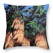Palm Canyon Entrance Throw Pillow