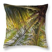 Palm Collection - Coconuts Are Fine Throw Pillow